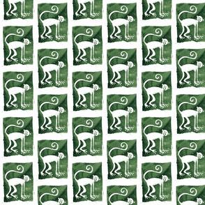 monkey008