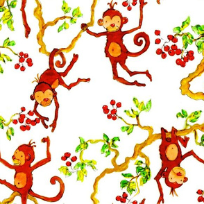 Fiaba Monkeys