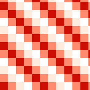 Diagonal Checkered Stripes - C