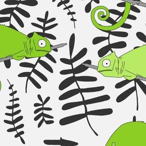 jungle_chameleon