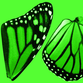 Lime Green Monarch Butterfly Costume Wings