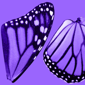 Medium Purple Monarch Butterfly Costume Wings
