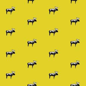 moose_mustard