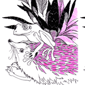 Frog Hedgehog Peacock Aloe