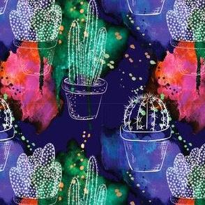 Cactus Garden - Midnight