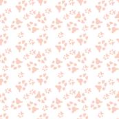 peach paw prints on white