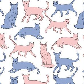 Cats // serenity pantone rose quartz pastel blue pink