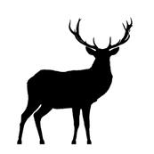 Black deer swatch