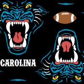 Carolina Football Panther Cardiac Cats