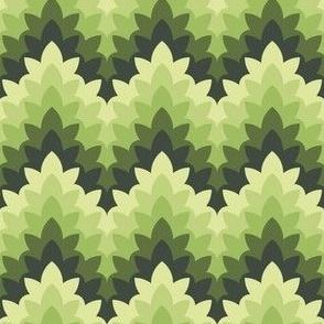 leafy zigzag : oolong green tea