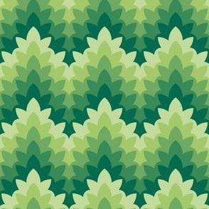 leafy zigzag : medicinal herbs