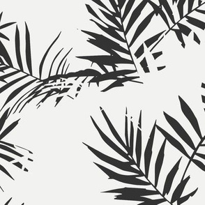 palm_black_and_white