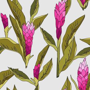 gingerflower_pink