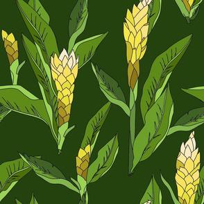 gingerflower_yellow