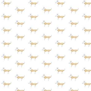 Baby Fabric  / Funny Dog Fabric - The  Beast