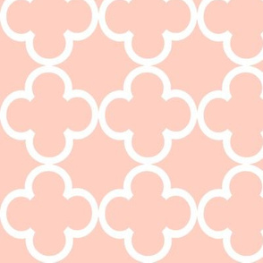 peach lattice by Diane Gilbert