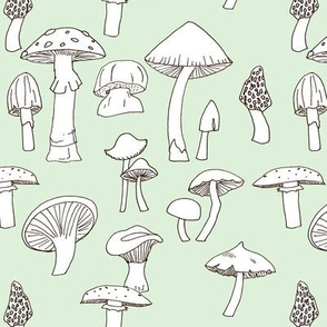 Hand drawn Mushrooms on Cucumber green