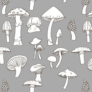 Hand drawn Mushrooms on Gray