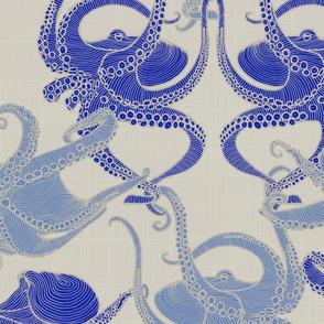 Cephalopod - Octopi - Mediterranean