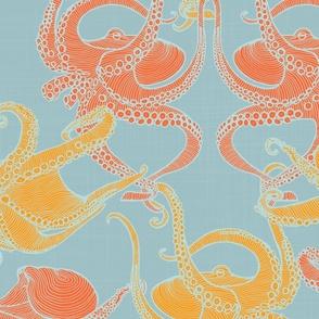 Cephalopod - Octopi - Tropical