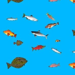 Alaska Fish Scatter