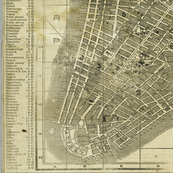 1850 Map of New York