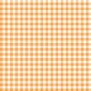 Mini Gingham Tangerine