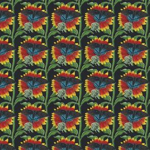 sfsunflowerbutterfly000123