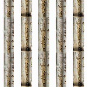 Silver Sabi Stripes
