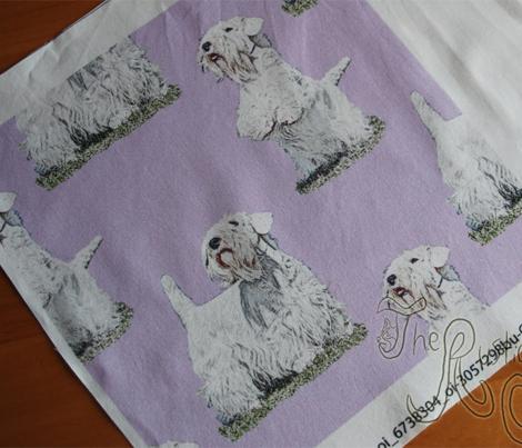 Posing Sealyham terriers - purple