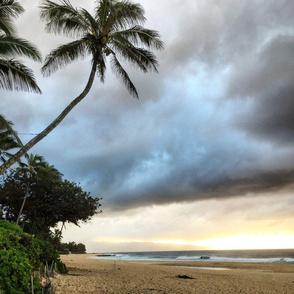 Stormy Paradise