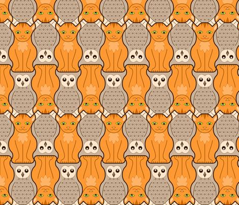 owl + pussy cat : marmalade + coffee
