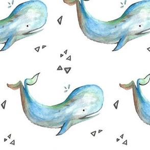 Hadden's Whale