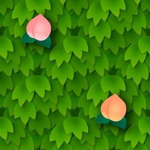 Fruit Harvest - Peach