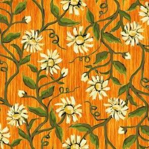 Daisy Vines 3
