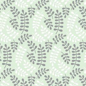 cucumber fern // briar wooods