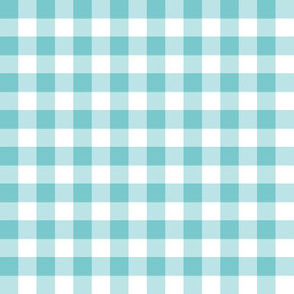 turquoise check