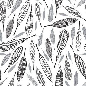 Fanciful Feathers (Monochrome)