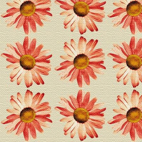 orange daisy by Diane Gilbert