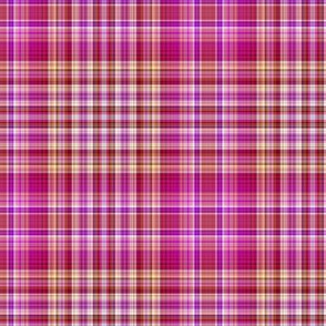 RASPBERRY AND MELON PLAID 1