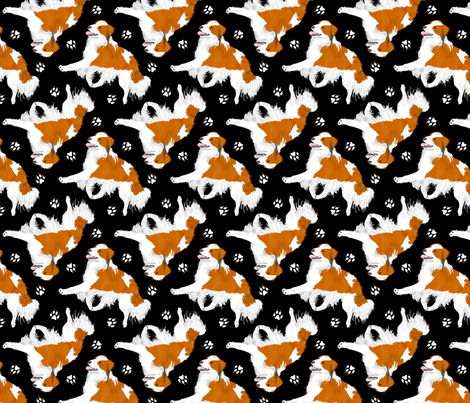 Trotting Kooikerhondje and paw prints - black