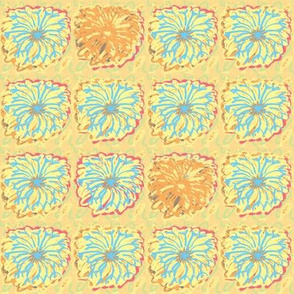 blossom-yellow-beauties
