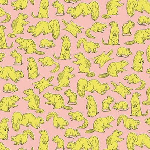Rodents / Gnawers | Yellow on Pink | Small Scale