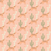 Deset Coyote