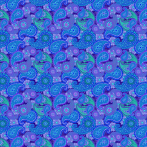 Paisley_Party_002