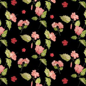 Island Hibiscus