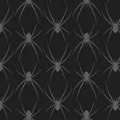 Spider, spider...