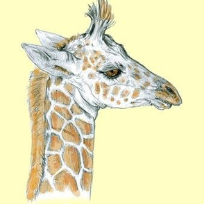 Baby Giraffe half drop on Yellow