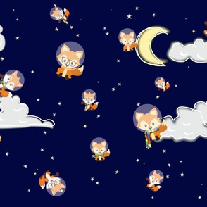 Foxes in Space