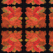 Quilted Autumn Oak Leaves on black medium scale